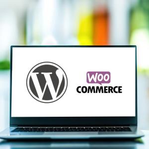 Formation wordPress – Option e-commerce